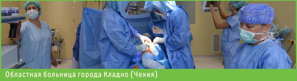 Областная клиника Кладно в Чехии, Эндопротезирование в Чехии